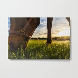 Grazig at Sunst Metal Print
