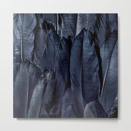 Black Feather Close Up Metal Print