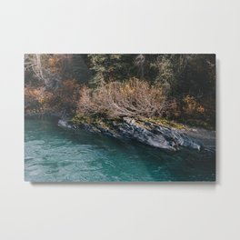 Glacial Stream II Metal Print