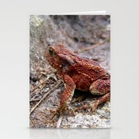 frog Stationery Cards featuring frog. by zenitt