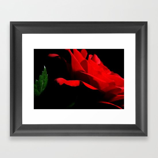 Rose. Framed Art Print