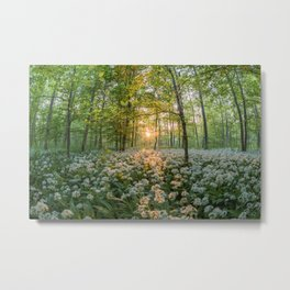 Bear's Garlic Forest Metal Print