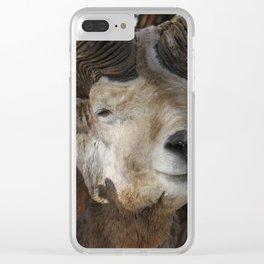 Altai argali Clear iPhone Case