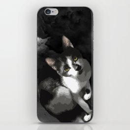 Gypsy Da Fleuky Cat and the Black Starry Night iPhone Skin