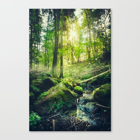 Down the dark ravine II Canvas Print