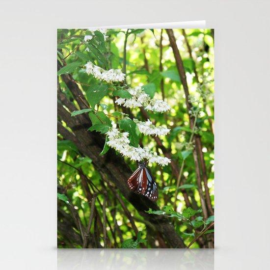 Japanese Butterfly Stationery Cards
