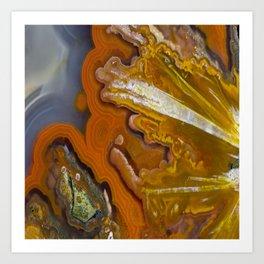 Condor Agate Sagenite Art Print
