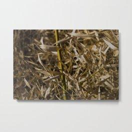 Winter Bamboo Metal Print