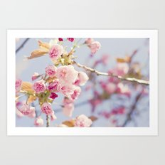 Bubble Gum Spring Art Print