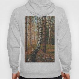 Lone Birch Hoody