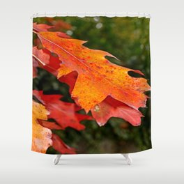leaves in Autumn Shower Curtain
