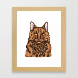 Cat Face Framed Art Print