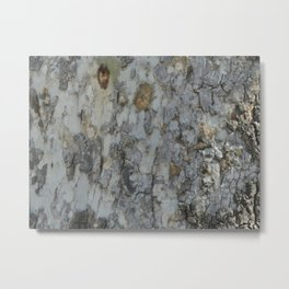 TEXTURES -- California Sycamore Bark Metal Print