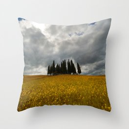 Golden fields of Tuscany Throw Pillow