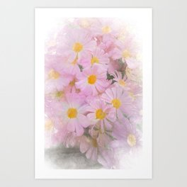 pink daisy in bloom in spring Art Print