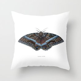 Black Witch Moth Throw Pillow