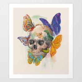 House of Wonders Art Print