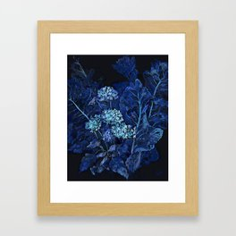 Hydrangea and Horseradish, Blue and Black Framed Art Print