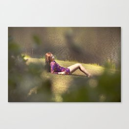 Through the Hedges Canvas Print