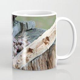 Stashing my Nuts Coffee Mug