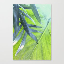 Tropical Leaves Canvas Print