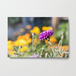 Purple Flower Photography Print Metal Print