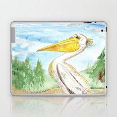 Lake of the Woods Laptop & iPad Skin