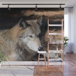 The Eyes of a Wolf Wall Mural