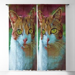 Cute Cat Collection 16 Blackout Curtain