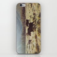 sunrise iPhone & iPod Skins featuring Three Meadow Moose by Kevin Russ