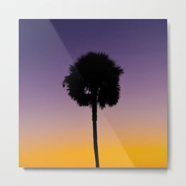 Palm Before the Storm Metal Print