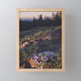 Wildflowers at Dawn - Nature Photography Framed Mini Art Print