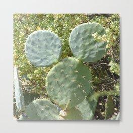 Mickey Cactus | Greek Nature Metal Print