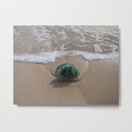 Bluebottle Jellyfish Metal Print