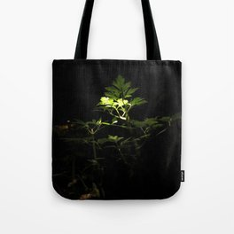 Nighttime in the Garden, 3 Tote Bag
