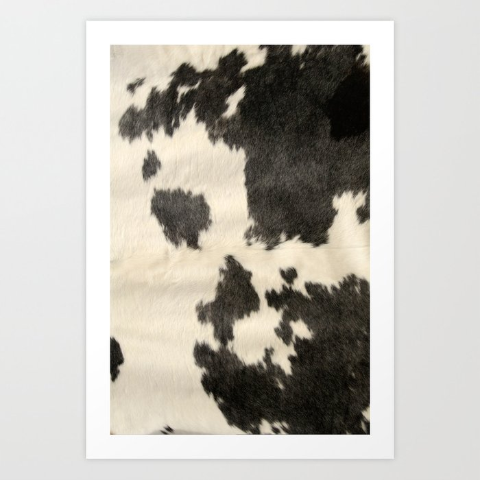 Black & White Cow Hide Kunstdrucke
