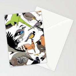 color birds Stationery Cards