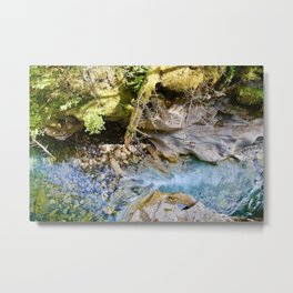 johnston canyon, 2017. Metal Print