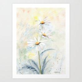 White Daisies Kunstdrucke