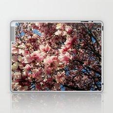 Partially Pink Laptop & iPad Skin