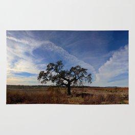 Lone Oak Tree, Laguna de Santa Rosa, Sonoma County Rug