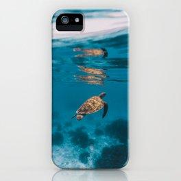 Turtle iii iPhone Case