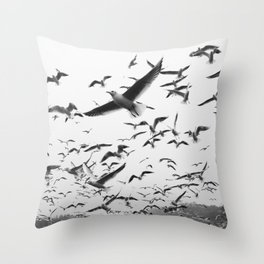 FLOCK - OF - SEAGULLS - FLYING - OVER - RIPPLING - RIVER - PHOTOGRAPHY Throw Pillow