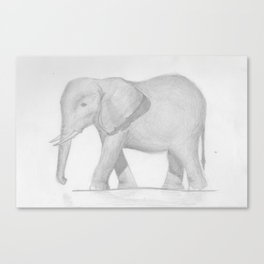 Elephante Canvas Print