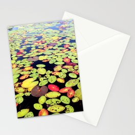 Lounging Lilys Stationery Cards