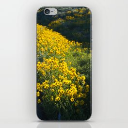 Sunflowers by the Road iPhone Skin