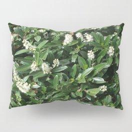 green/white Pillow Sham