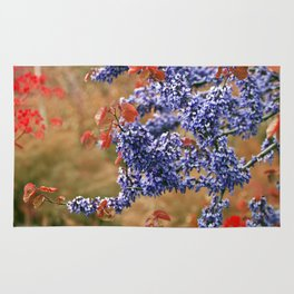 Blossoms of Spring Rug