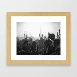 Sonoran Desert Fog (iPhone) Framed Art Print