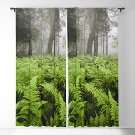 Fern Prairie Nature Forest Photography Blackout Curtain